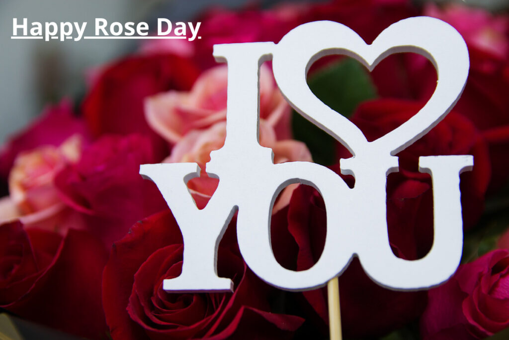rose day captions for wife